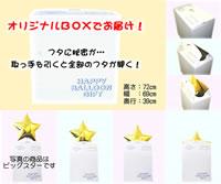 バルーン専用BOX